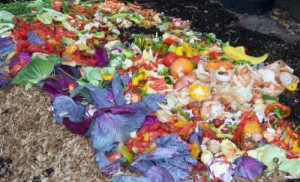 colorful compost